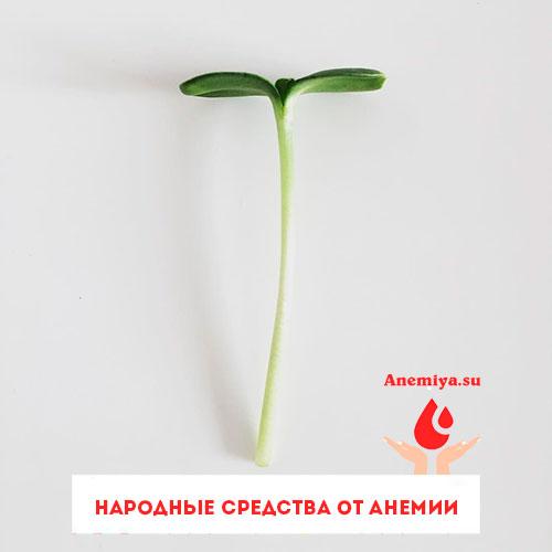 narodnye-sredstva-dlya-anemii-dlya-rebyonka